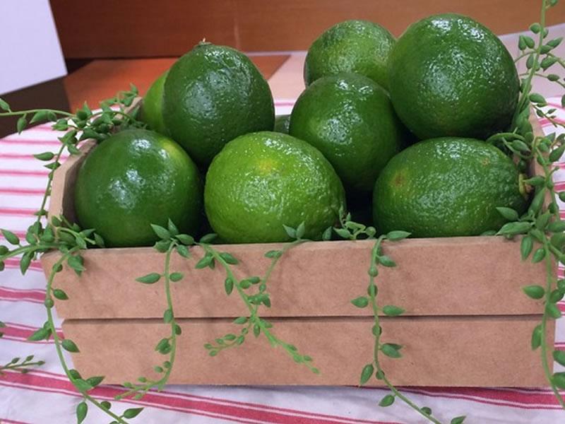 Limão ajuda a emagrecer? Explicamos mitos e verdades sobre a fruta