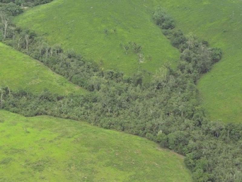 Exploração mineral na Amazônia pode levar a disputas judiciais
