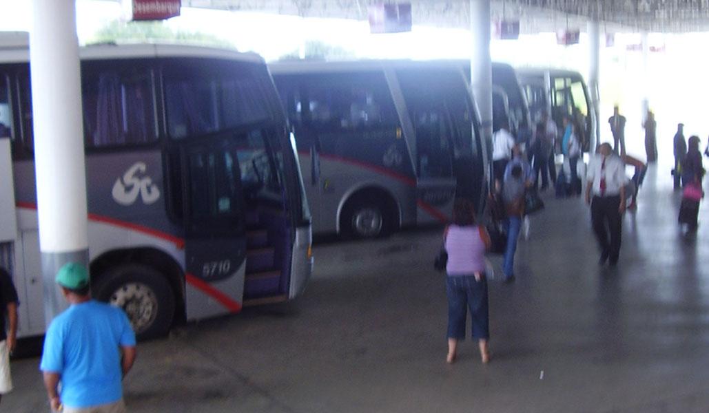 /17729onibus-cp.jpg