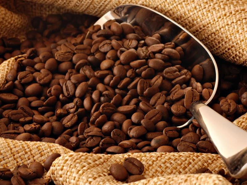/17775agro0801_cafe-arabica.jpg