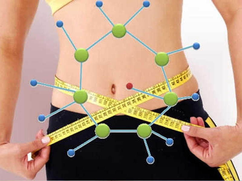 /17820metabolismo1401_metabolismo.jpg